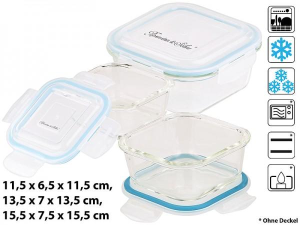 5in1-Glas-Frischhaltedosen-Set, 6-tlg., Clip-Deckel, -40 bis +400 C°