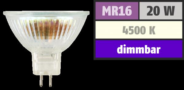 Halogen-Spiegellampe McShine, MR16, Neutralweiß, 50mm Ø, 12V/20W, 36° Flood
